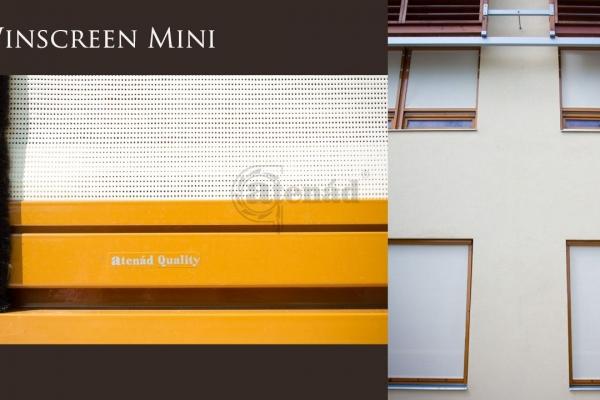 winscreen-mini-2D3C463F4-DED3-8A44-A707-A051AF679EA8.jpg